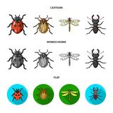 Insekt, pluskwa, ściga, łapa Insekt ustawiać inkasowe ikony w kreskówce, mieszkanie, monochromu symbolu zapasu stylowa wektorowa  ilustracji