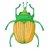 Insekt pluskwy ikona, kreskówka styl ilustracji