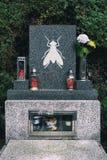 Insekt wird zum Tod nach Löschung verringert, gesunken und beseitigt stockfotos