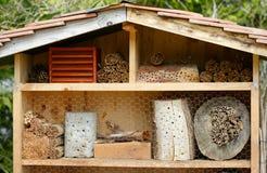 Insekta hotel z bambusowymi kijami Fotografia Royalty Free