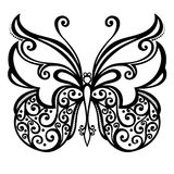 Insekta motyl Fotografia Royalty Free
