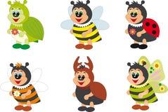 Insekte Stockbilder
