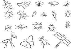 Insekte Lizenzfreies Stockbild