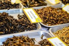 Insekten gebraten Stockfotos