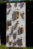 Insekten und Gegenstände des Steins und des Drahtes im Südgarten des Schlosses von Strassoldo Friuli (Italien) Lizenzfreie Stockfotografie