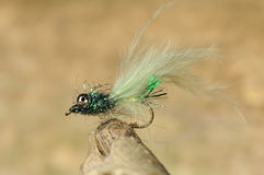 Insektenfischereiköder stockbilder
