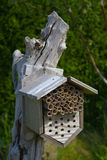 Insektenhaus Stockfoto