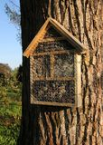 Insektenhotel auf Baumstamm Lizenzfreies Stockbild