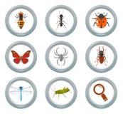 Insektenikonen eingestellt Stockfotos