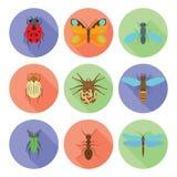 Insektenikonen vector flache Art auf weißem Hintergrund Lizenzfreies Stockbild