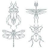 Insektenikonen, Vektorsatz Abstrakte dreieckige Art Gottesanbeterin, Heuschrecke, Ameise, Rüsselkäferkäfer Lizenzfreie Stockfotos