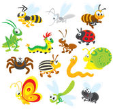 Insekty Fotografia Stock