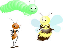 insekty Zdjęcia Royalty Free