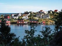 Insel-Ansicht thtu Norwegens Lofoten die Bäume Lizenzfreies Stockfoto