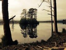 Insel auf dem ruhigen See Stockfotografie