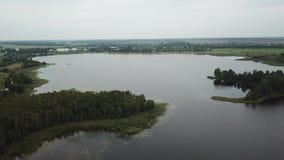 Insel auf der See Kiefer stock footage