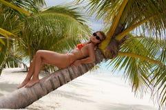Insel des Paradieses! Stockfotografie