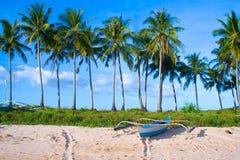 Insel-Fischerboot-u. Kokosnuss-Bäume stockfotos