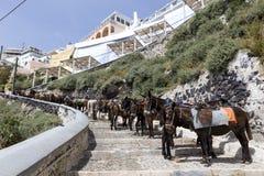 Insel Griechenlands Santorini in die Kykladen-Eseln der Inseln sind u Stockbilder