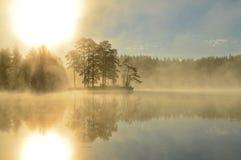 Insel im Nebel in Schweden Lizenzfreie Stockbilder