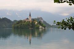 Insel im See verlief Slovenie lizenzfreies stockfoto