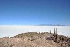 Insel Incahuasi Salar de Uyuni, Bolivien lizenzfreies stockfoto