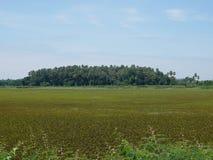 Insel Khams Chanot stockbild