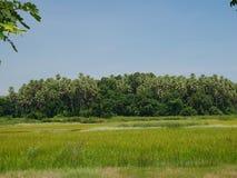 Insel Khams Chanot lizenzfreie stockfotos