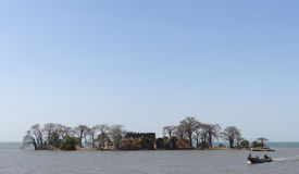 Insel Kunta Kinteh Stockbild