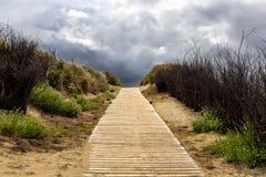 Insel Langeoog de Holzweg Foto de Stock