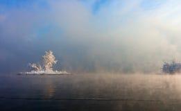 Insel mit Bäumen mitten in dem Wasser, bedeckt durch Nebel lizenzfreie stockfotografie