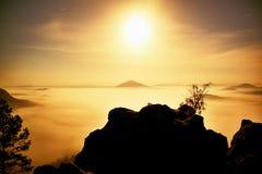 Insel mit Baum im nebelhaften Ozean Vollmondnacht im schönen Berg Sandsteinspitzen erhöht vom schweren sahnigen Nebel Lizenzfreie Stockfotos