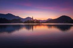 Insel mit Kirche in ausgeblutetem See, Slowenien bei Sonnenaufgang stockfotos