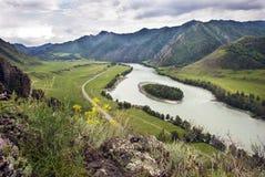 Insel mitten in dem Fluss Katun lizenzfreie stockbilder