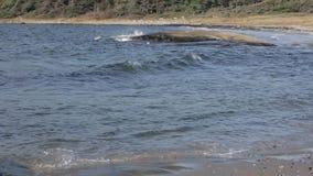 Insel Norwegens Hvaler stock video footage