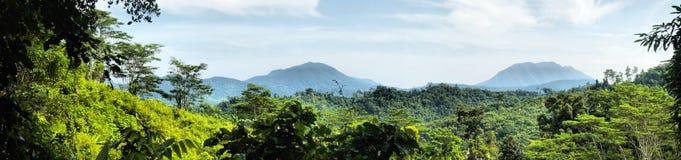 Insel Palawan Panorama. Eine Landschaft. stockfoto