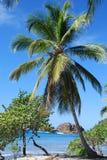 Insel-Paradies Stockfoto