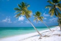 Insel-Paradies Lizenzfreies Stockfoto
