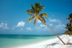 Insel-Paradies Stockbild