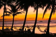 Insel-Sonnenaufgang mit Hängematten stockfoto
