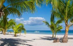 Insel-Strand-Ansicht, Philippinen stockfotos