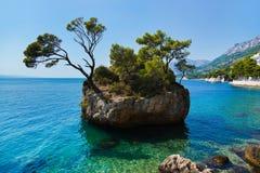 Insel und Bäume Lizenzfreies Stockfoto