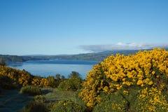 Insel von Chiloe lizenzfreie stockfotos