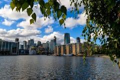 Insel von Hunden - London stockbilder