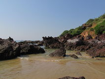 Insel von Schildkröten stockfoto