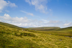 Insel von Skye Landscape lizenzfreies stockbild