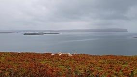 Insel von Skye, von Schottland - Ansicht über Ardmore-Punkt in Richtung zu entferntem Dunvegan-Kopf mit hochragenden Seeklippen u stock video