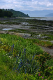 Insel-Zusatz-Coudres, Quebec stockfotografie