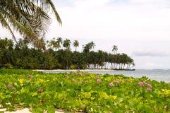 Inseln San-Blas lizenzfreie stockfotografie