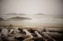 Inseln werden der Horizont auf einem Treibholz-gesäumten Strand auf einem nebelhaften Morgen nahe Tofino, Vancouver Island, Briti stockbilder